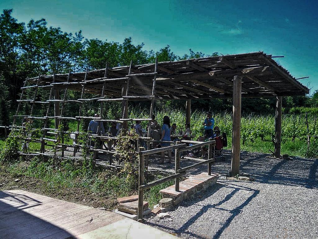 Azienda agricola Tosi - Pergolato