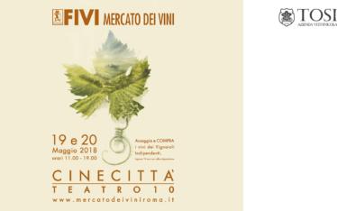 Mercato dei Vini FIVI Roma
