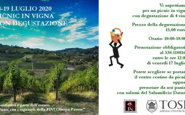 Picnic in vigna con degustazione (18-19 luglio 2020)