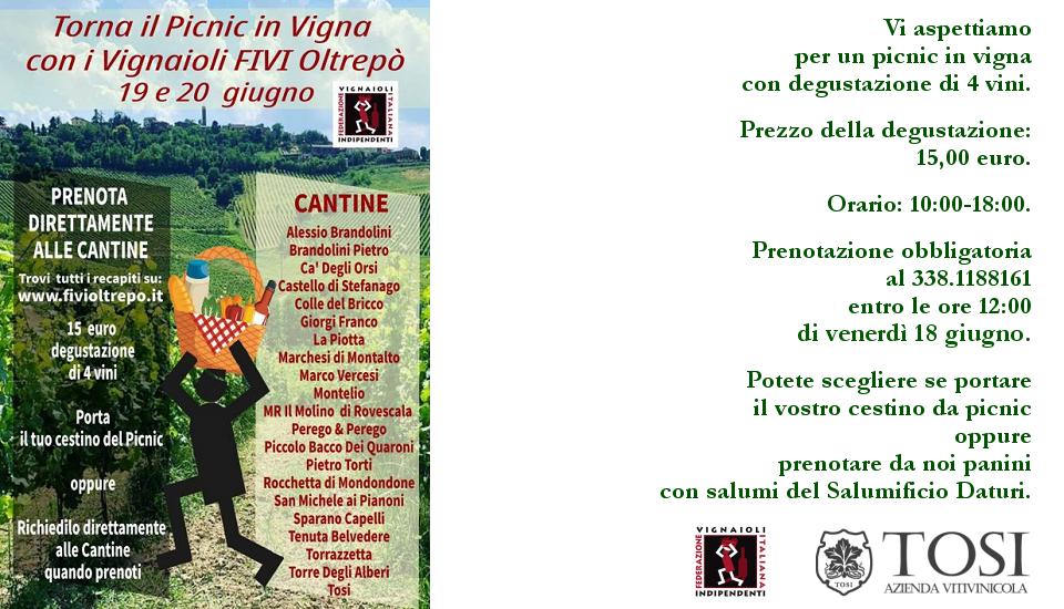 Picnic in vigna con degustazione vini (19-20/06/2021)